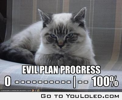 evil plan progress had a cat looked just like this one