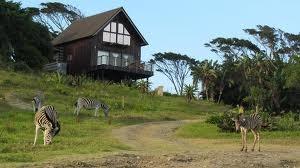 Hluleka Nature Reserve