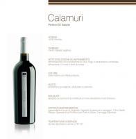 Magnifico Primitivo ....!! - Le Mie Degustazioni - Puglia - Lecce - Cantine e Vini d'Italia - Vinit guida enogastronomica