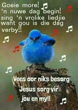 Jesus sorg vir my en jou!!