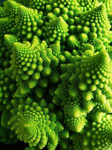 Fractal Geometry in Cauliflowers