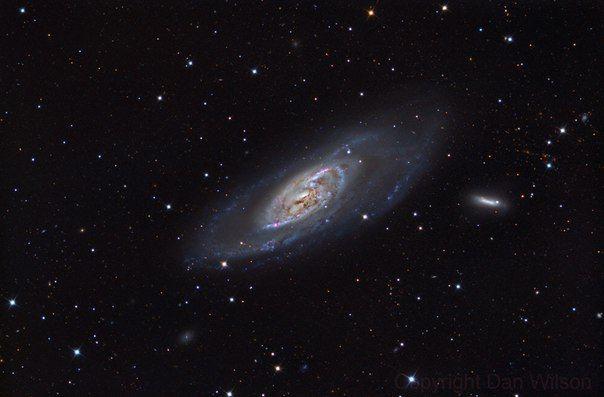 Галактики NGC 4558 (галактика в созвездии Волосы Вероники)и NGC 4248 (спиральная галактика с перемычкой в созвездии Гончие Псы) / Популярная астрономия