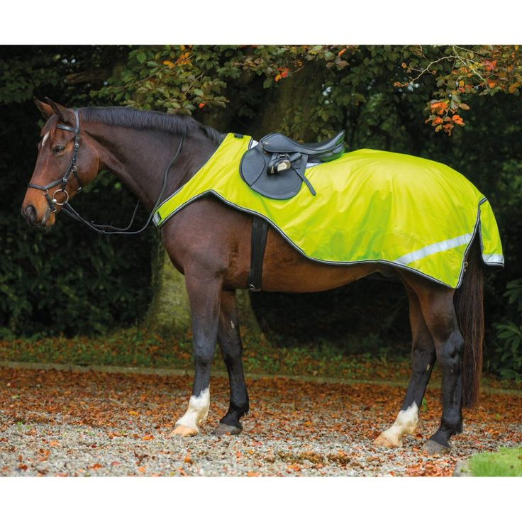 Horseware® Amigo® Reflective Competition Sheet Yellow