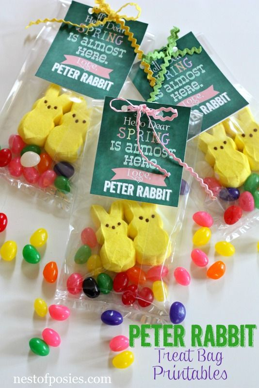 Peter Rabbit Treat Bag Printables Diy Ideas Easter Treats