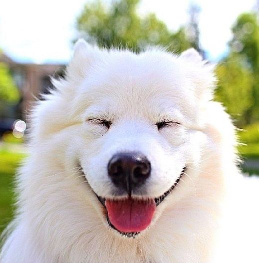 This is my happy face!