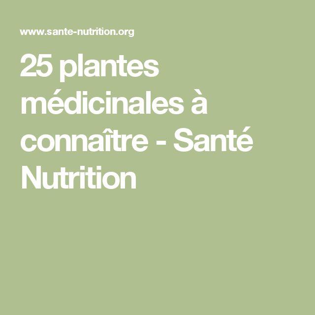 25 plantes médicinales à connaître - Santé Nutrition