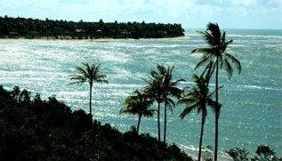 Melhores Praias do Nordeste | Promoção | CVC Viagens