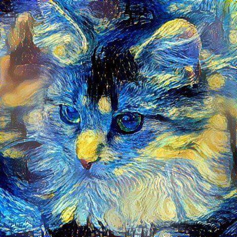 Van Gogh  Starry Night #нужнобольшехэштегов this is a cat van gogh