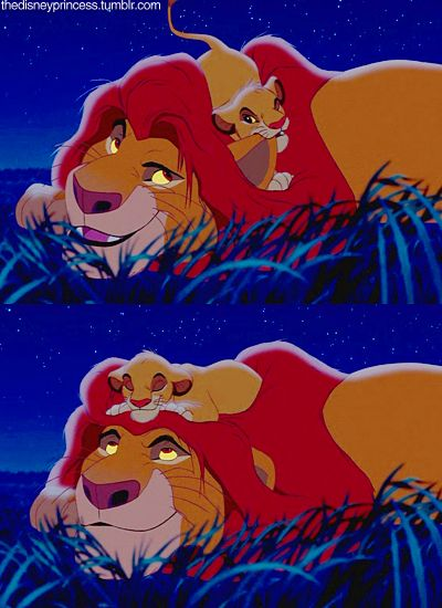 *-*: Lion, Movies Books, Mufasa, Thelionk, Lion King, Pelicula