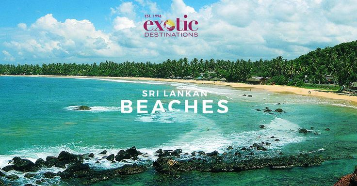 Looking for the best Sri Lanka tour packages in the online world? Then we at exotic destinations can help you with your search. With our Sri Lanka Holiday Packages, you can not only explore the country in your own way but create wonderful memories in the process.