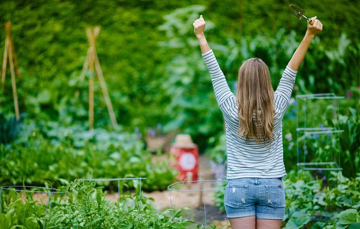 Stretches for gardeners with sore shoulders. Even if you're new to asanas, this short sequence can help offset some of the soreness and stiffness associated with tending to flower beds and vegetable boxes.