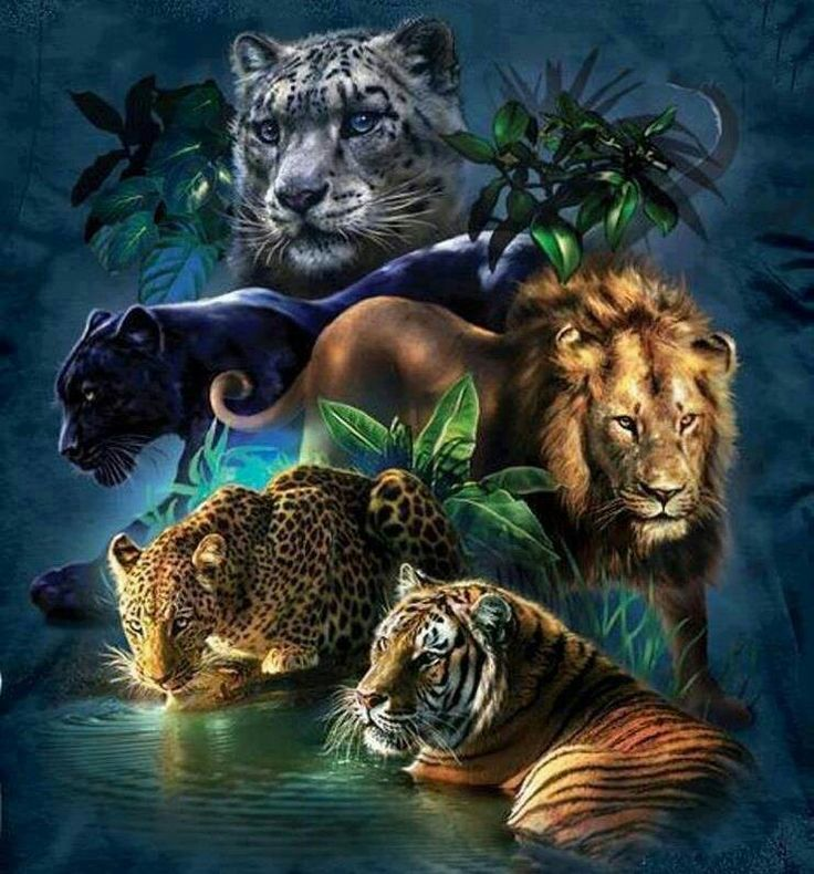 A Jungle Of Big Cat Designs: 375 Best Tattoos Images On Pinterest