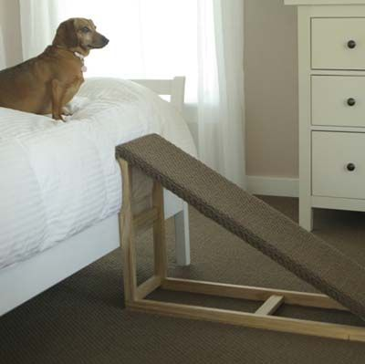 Best 25+ Dog Steps Ideas On Pinterest | Dog Stairs, Pet Steps And Dog Stairs  For Bed