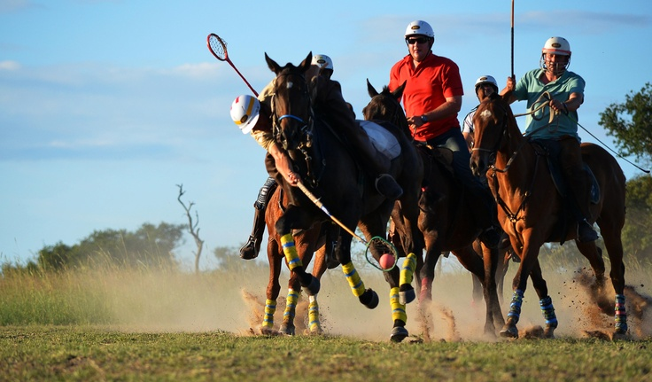 Gathering with all the top Polocrosse players at Antelope Park. A weekend with speed and adrenalin!