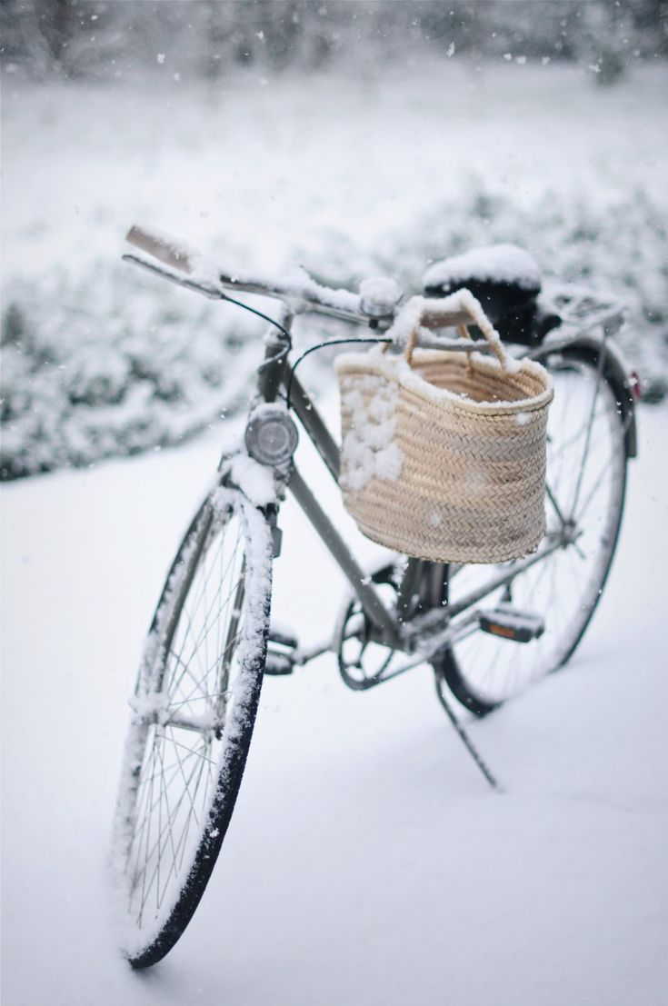 Jazda na rowerze i zdrowy tryb życia to to, co Gala lubi najbardziej (bez względu na pogodę) - oprócz mebli oczywiście :)