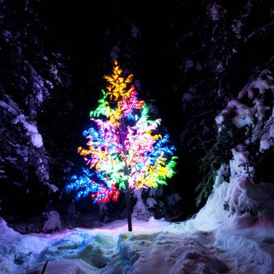 La Forêt enchantée de Saguenay ouvre ses portes dès le 4 décembre 2014! C'est un rendez-vous pour toute la famille! / Saguenay's Magic Forest opens on Decembre 4th 2014, don't miss it out! #noel #christmas #Cestgeant #SagLac #light #forest