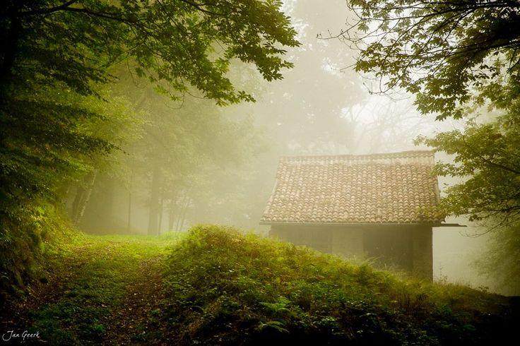 The House in the Forest by Jan Geerk on 500px