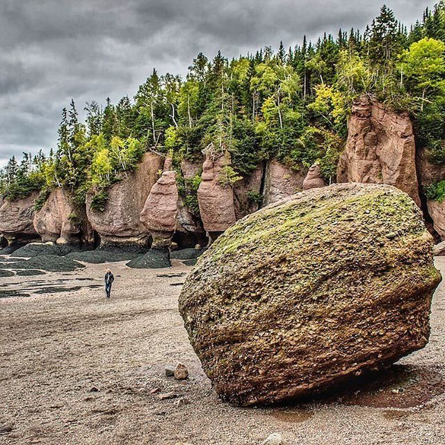 Twice a day, 160 billion tonnes of seawater flow in and out of #Canada's Bay of Fundy. In some places, like the Hopewell Rocks in New Brunswick (pictured), the tidal changes are so drastic that they expose the ocean floor. Thanks @globeguide for sharing your photo using #bbctravel!