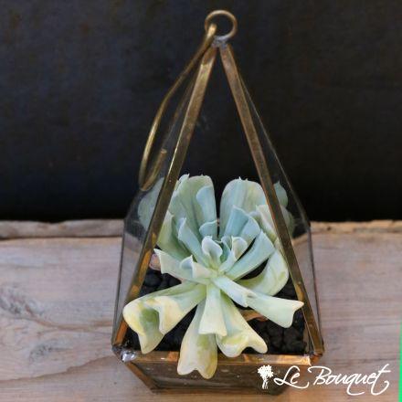Adorable succulent pyramid by Montreal based florist Le Bouquet St Laurent
