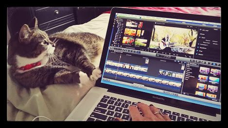 My kitty likes to help me edit my music videos. Meow.