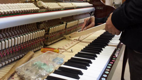 Walter Piano Grand Rim Press