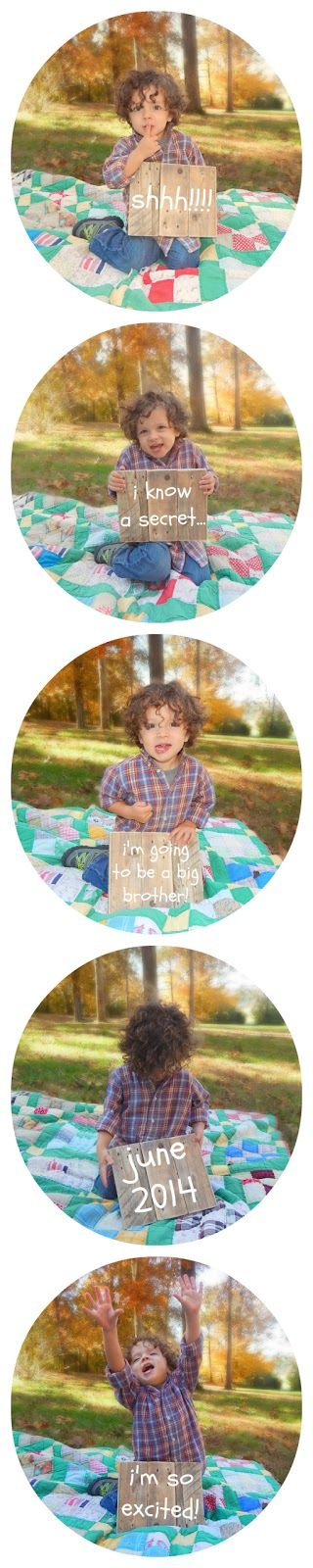"Oh Boy, Cato!: ""I'm Going to be a Big Brother"" An Announcement"