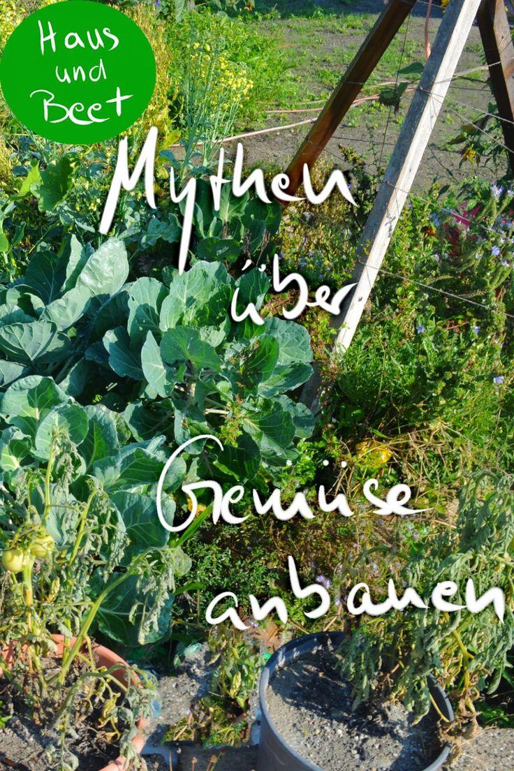 Mythen über Gemüse anbauen – Sie stimmen nicht