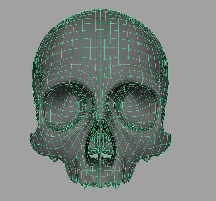 jlnsatome Skull Model Wireframe Date Acessed [01/03/2017]