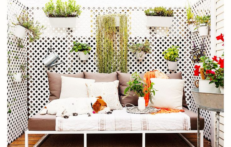 Small outdoor patio with neutral furniture and plants hanging on wall