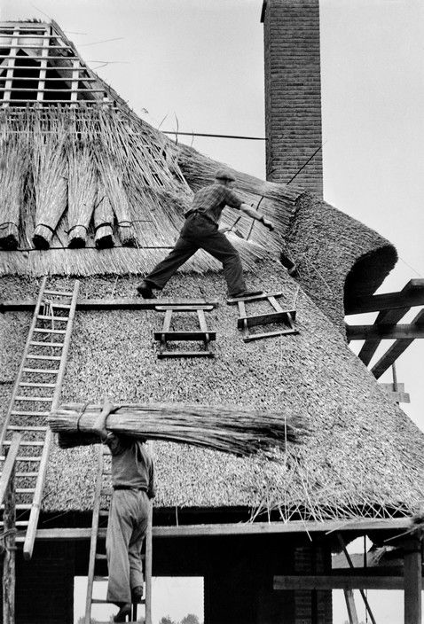 Henri Cartier-Bresson (Chanteloup-en-Brie, 22 agosto 1908 – L'Isle-sur-la-Sorgue, 3 agosto 2004): Ghent, Belgium, 1953