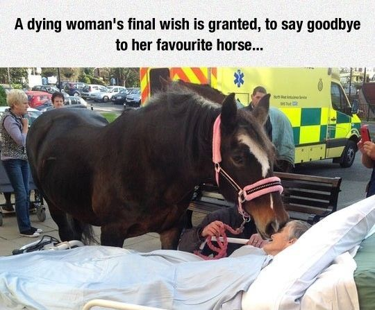 Saying Goodbye For The Very Last Time #lol #haha #funny