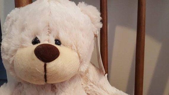 Flossy the Teddy Bear