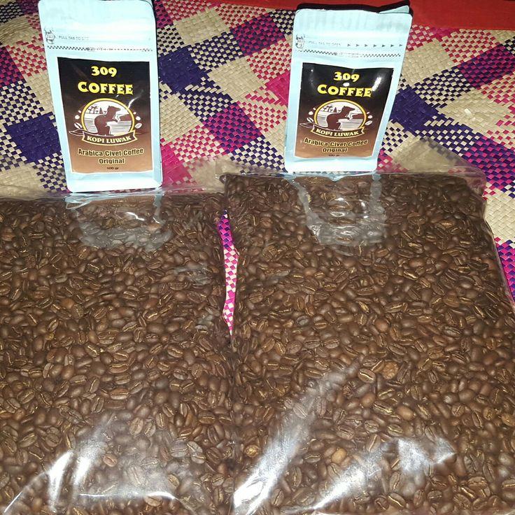 Luwak arabica liar per 1kg Rp350.000