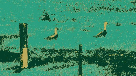 Two Ducks in the Grass by BlackbirdArtDesign on Etsy, $35.00