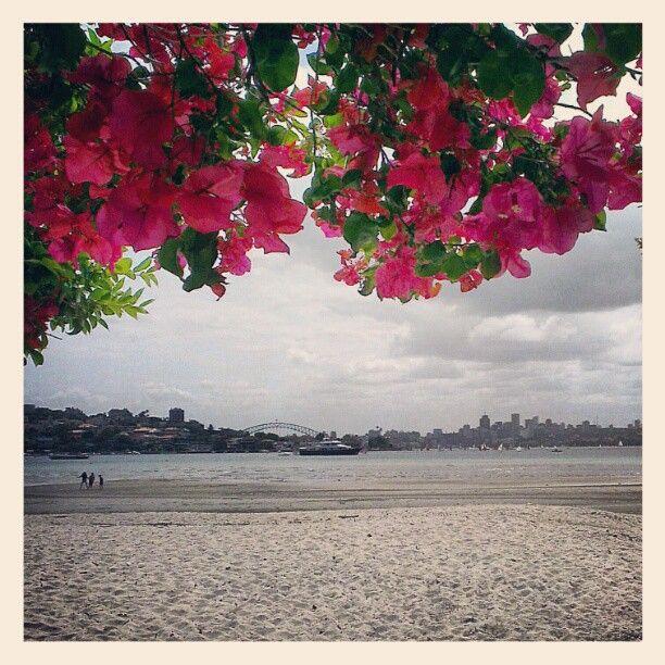 Rose Bay, Sydney Australia | The Travel Tester | www.thetraveltester.com