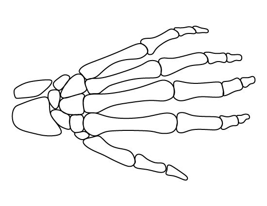 Skeleton hand pattern. Use the printable outline for crafts, creating stencils, scrapbooking, and more. Free PDF template to download and print at http://patternuniverse.com/download/skeleton-hand-pattern/