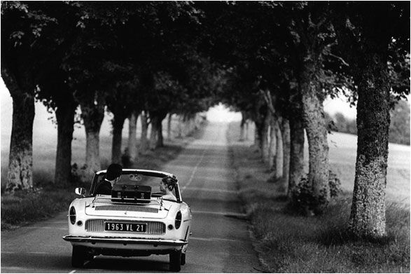 open top drive along tree-lined country roads