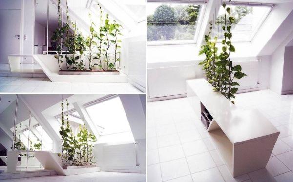 Grüne Wand-Indoor Garten Sichtschutz-Raumteiler Ideen