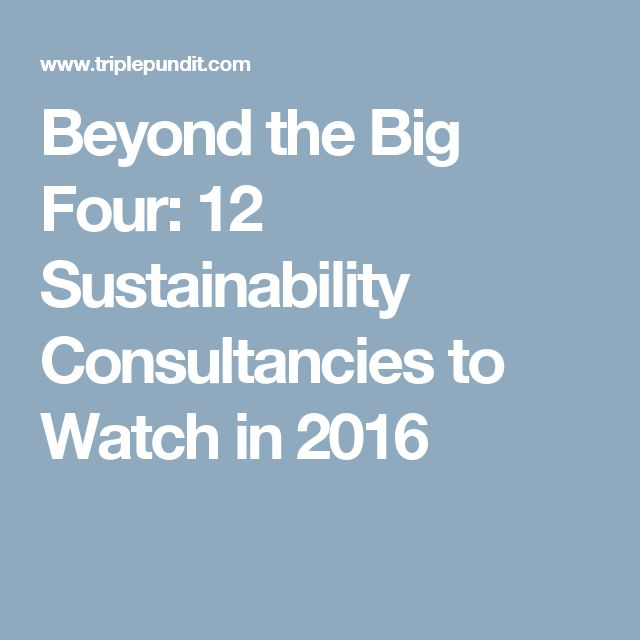 Beyond the Big Four: 12 Sustainability Consultancies to Watch in 2016