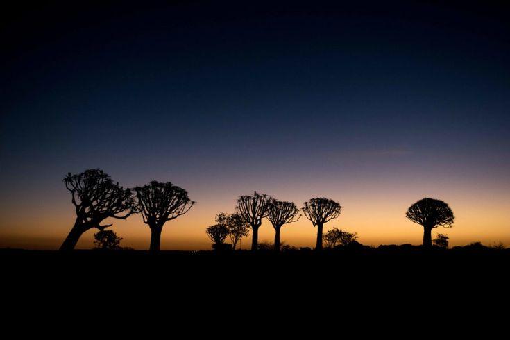 Dicas da Namíbia - Roteiro de Viagem Completo do Sul ao
