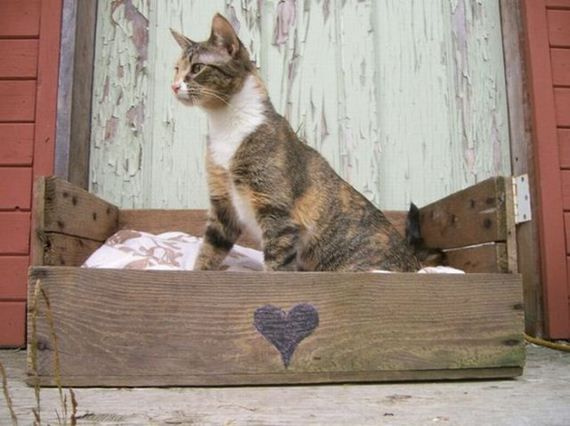 Stuff You Can Make from Old Pallets: Dogs Beds, Cat Beds, Pallets Beds, Wooden Pallets, Pet Beds, Old Crates, Wood Pallets, Old Pallets, Pallets Projects