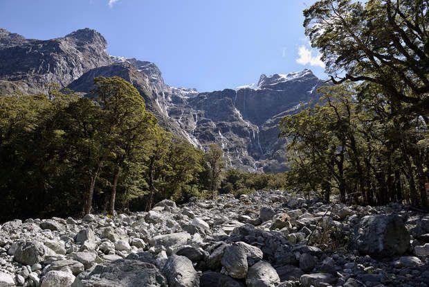 Cascade de pierreAprès dix kilomètres de plat, le sentier commence à grimper. Des avalanches de roches transpercent la forêt, laissant apparaître, au bout d'une trouée, l'imposante silhouette des monts Wick, qui font partie de la chaîne des Alpes du Sud. En cette fin de printemps austral, les pics toisant les 2 000 mètres sont encore encapuchonnés de neige et striés par les flèches argentées d'une multitude de cascades.