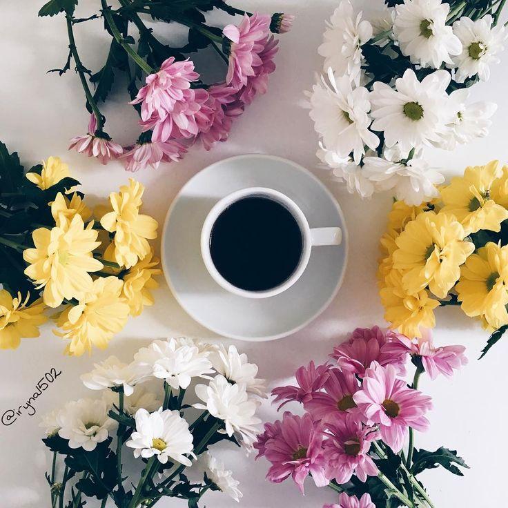 #coffee#coffeetime#coffeelover#coffeeart#igcoffee#coffee_inst#coffeeandseasons#kahvve#tv_living#tv_stilllife#still_life_gallery#vscocoffee#vscofeed#vscoinspiration#vscogallery#vscogram#vscoautumn#vscodaily#instacoffee#instaautumn#instadaily#vscoua#vscomania#pictureoftheday#bestofvsco ☕️ Morning
