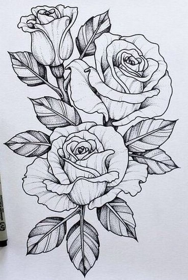 Resultado De Imagen Para Dagger Knife And Rose Flowers Drawn In Tattoo Style Flowertattoos Tattoo Design Drawings Beautiful Flower Drawings Flower Drawing
