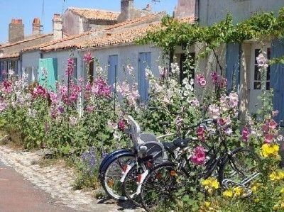 Charente-Maritime, ile d'Aix, roses trémières et pas de voitures. http://le.monde.de.momo.free.fr/les_plus_beaux_coins_de_france.htm