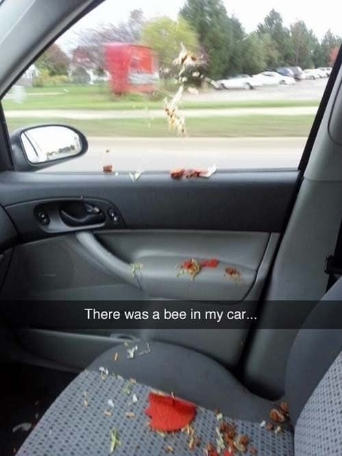 26 Snapchats That Are Funnier Than They Should Be