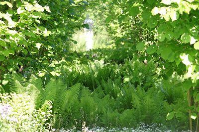Vi tre & trädgård - blogg: Planering av trädgård!
