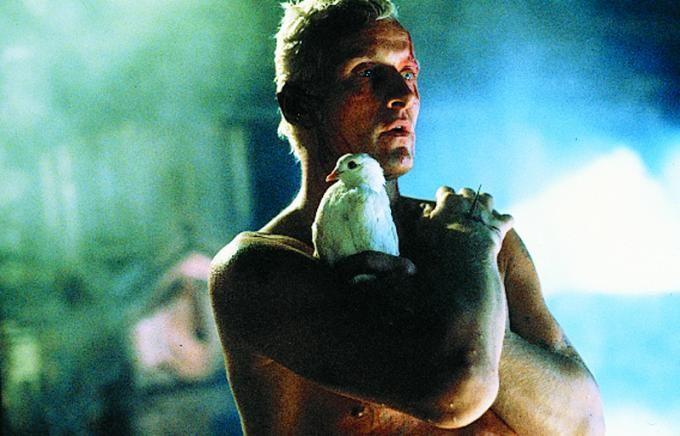 """""""J'ai vu tant de choses que vous, humains, ne pourriez pas croire..."""" (Ruther Hauer grandiose, le chef d'oeuvre photographique de Ridley Scott, film toujours inégalé de ce côté aujourd'hui.)"""