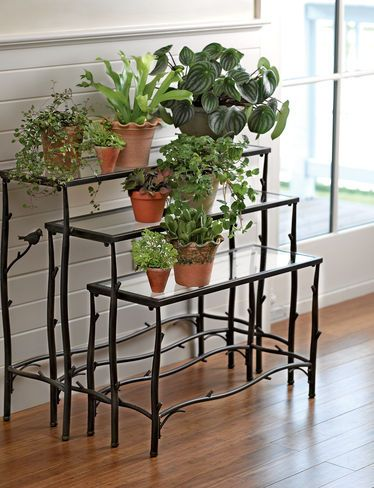 Display your plants on Nesting Branch Plant Stands, Set of 3 | gardeners.com
