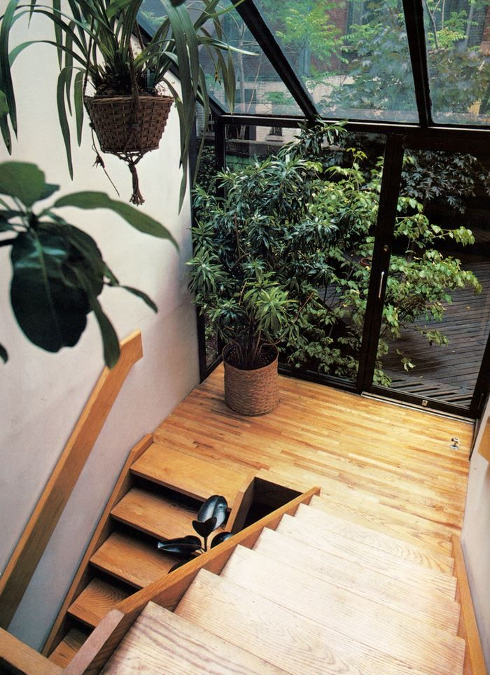 Check out a collection of 1980s interior design images featuring one of the decade's top trends: plants. Lots of amazing greenery, '80s furniture and more!